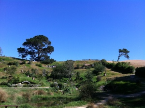 Hobbiton - Bilbo's tree on horizon