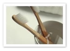 The Environmental Toothbrush